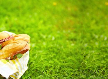 Акция «Лето – лучшее время для пикников».