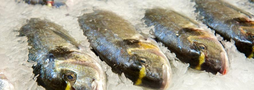 Как выбрать свежую рыбу!