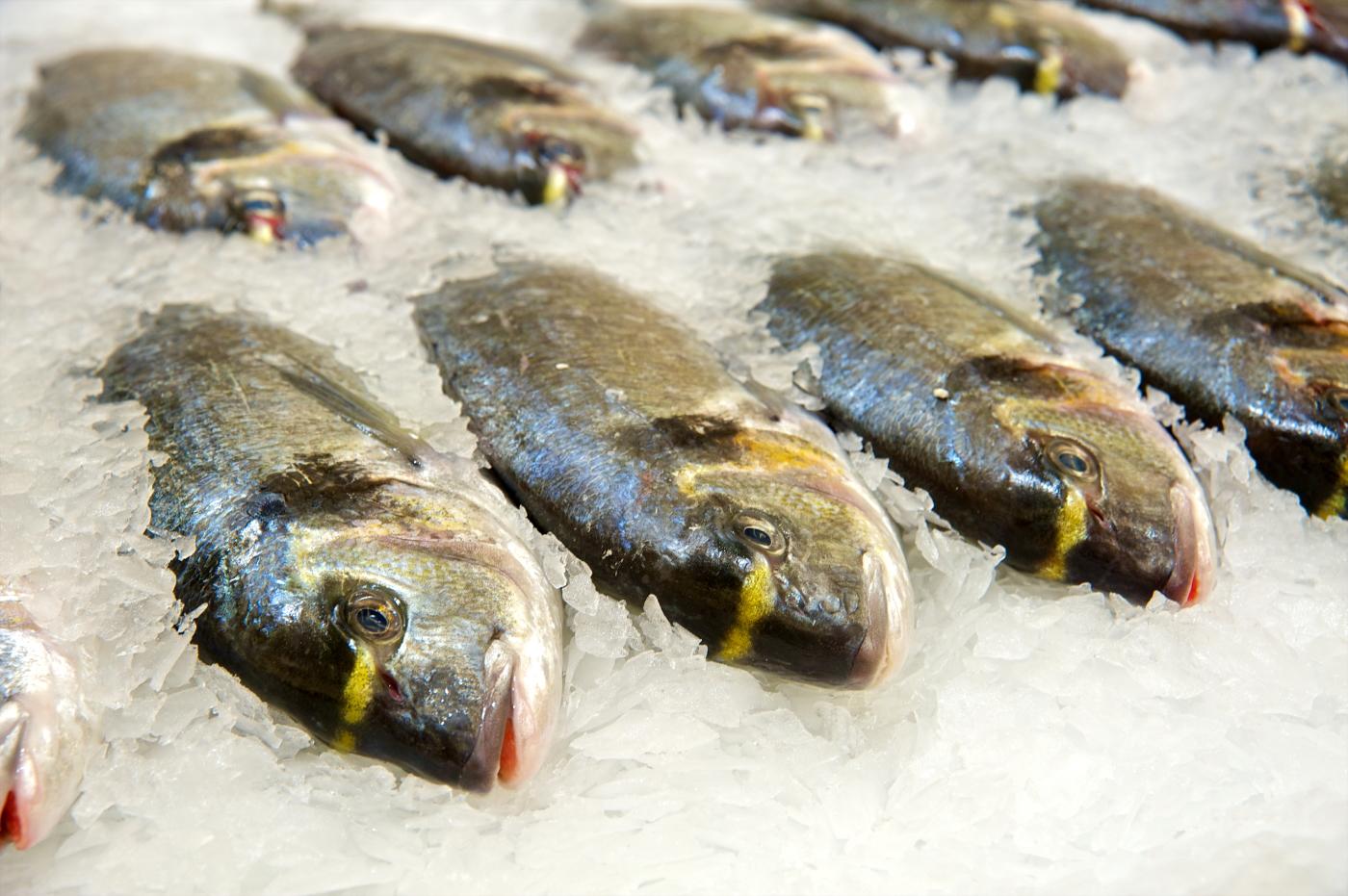 Як вибрати свіжу рибу!
